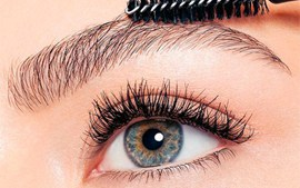 Реставрация с волосками - The Lashes